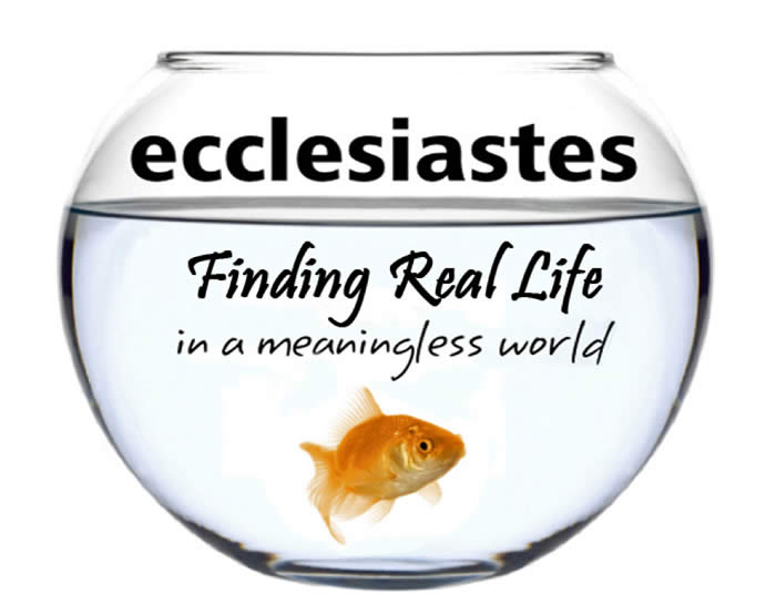 Ecclesiastes A View On Life And Happiness Curious Whimsy