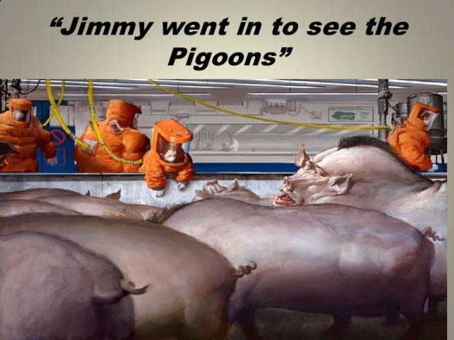 pigoons