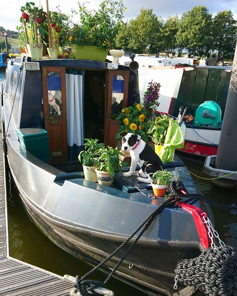 s boat & margot